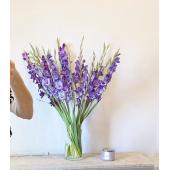 25 сиреневых гладиолусов в вазе